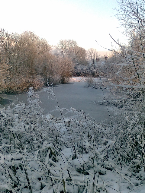 076Snow & ice on pond (480x640)