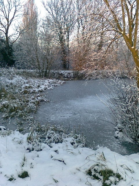 077Snow & ice on pond (480x640)