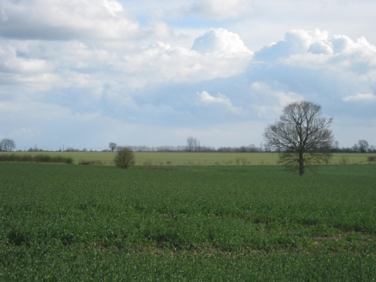 005View across fields from path (640x480)