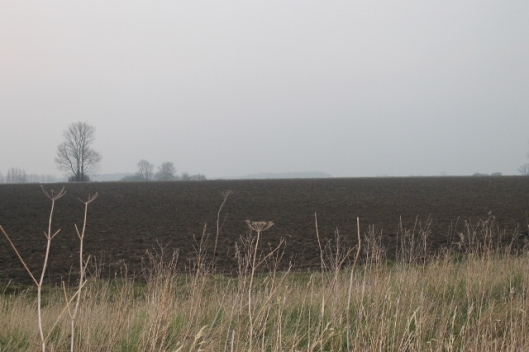 009A ploughed field (640x427)