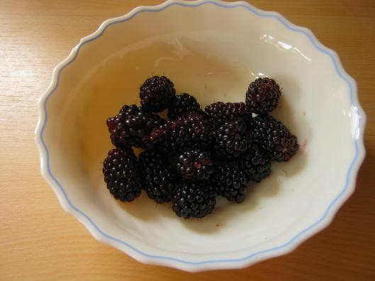 007Blackberries