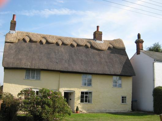 142Thatched roof