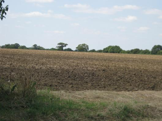 012Ploughed field