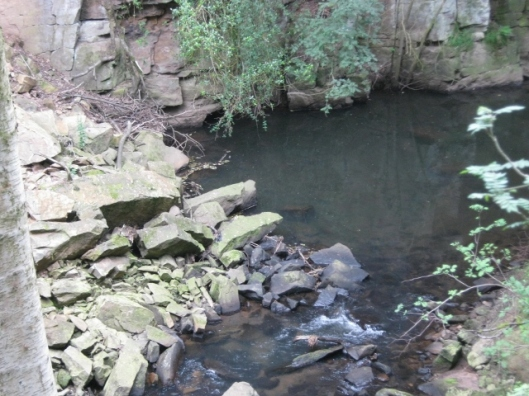 023Pool caused by landslip (640x480)