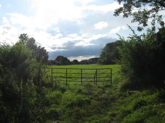 056Field, gate, clouds