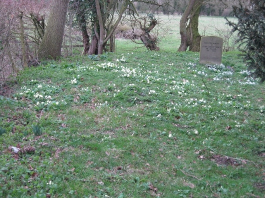 031St Margaret South Elmham churchyard (640x480)