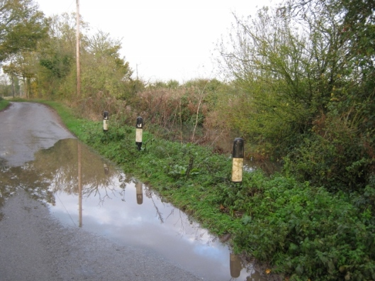 009Muddy lane with pond (640x480)