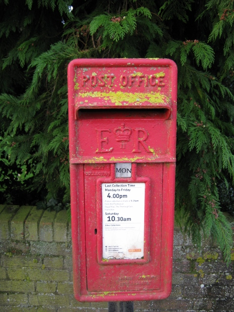 012Lichen covered post box (480x640)