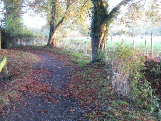 044Path through churchyard (640x480)