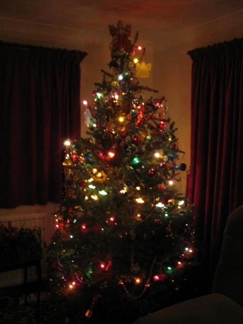 003Christmas tree (480x640)