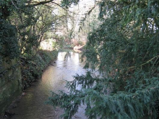 005Town river (640x480)