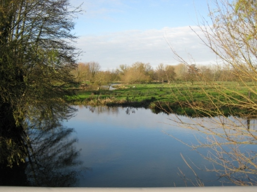 006River Waveney (640x480)