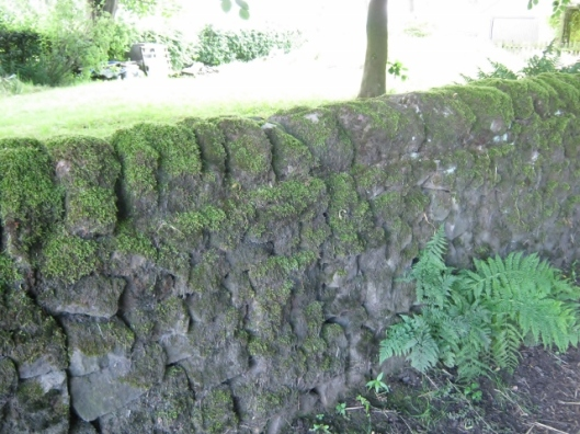 009Mossy wall (640x480)