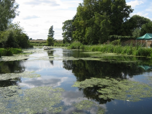 020Mill pond (640x480)