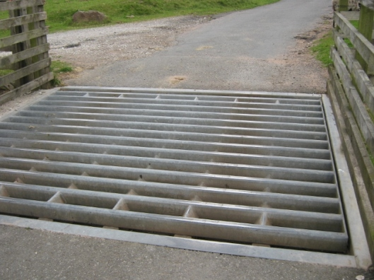 065Cattle grid (640x480)