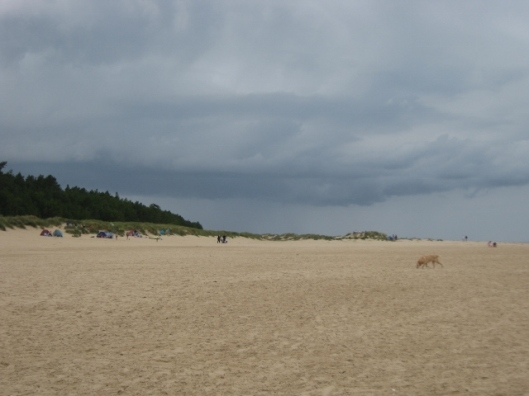017Wells beach (640x480)