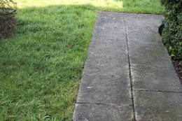 Path at the side of the house