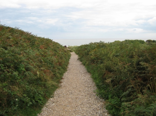 005Path at Dunwich Heath (640x480)