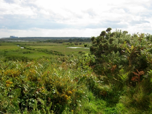 029Dunwich Heath (640x480)