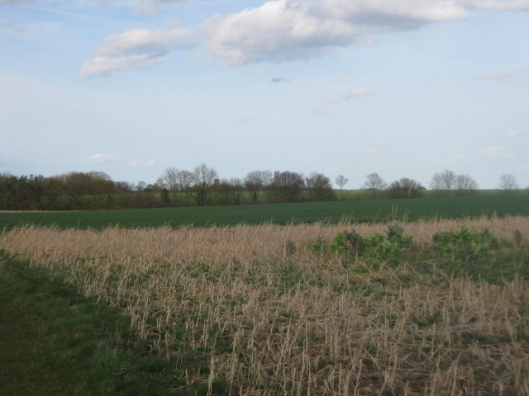 St Peters church across the fields