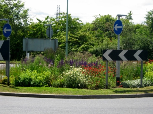 IMG_4802Traffic island Halesworth (640x480)