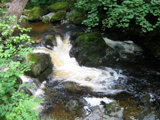 IMG_4943Aira Force (640x480)