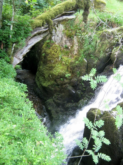 IMG_4973Aira Force (480x640)