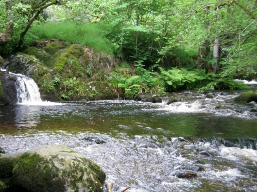 IMG_4983Aira Force (640x480)