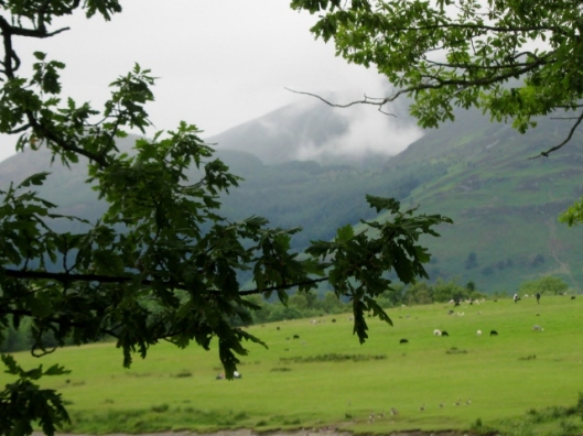 IMG_5051Fells by Derwentwater (640x480)