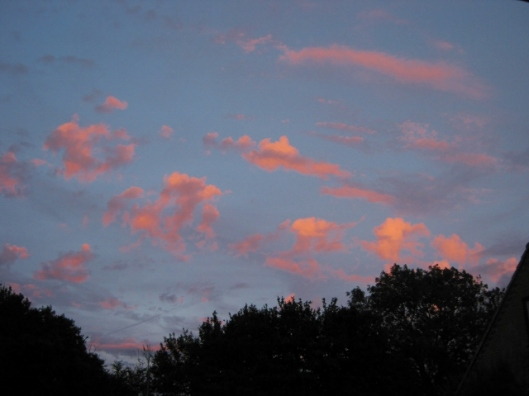 IMG_5335Pink clouds at sunset (640x480)