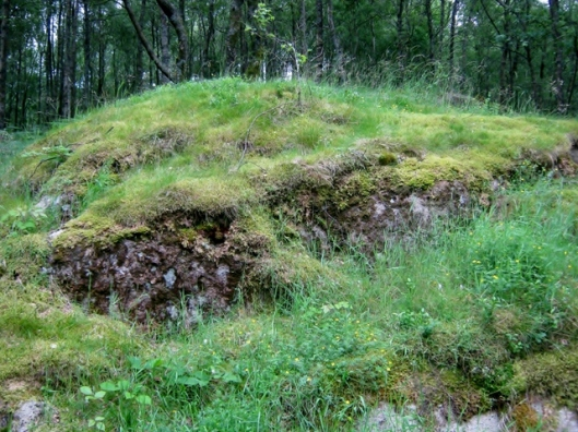 IMG_5159Mossy outcrop