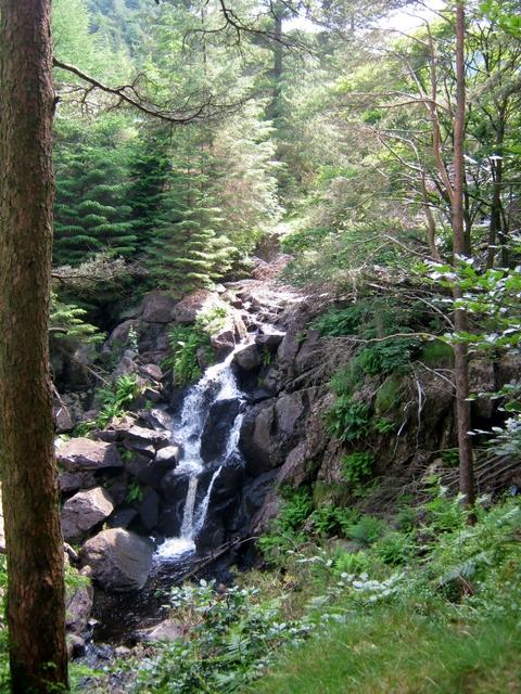 IMG_5217Dobgill falls