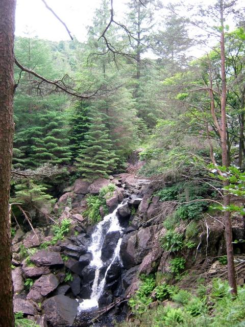IMG_5225Dobgill falls