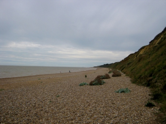 IMG_5594Dunwich beach (640x480)