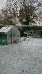 The greenhouse seen from the conservatory