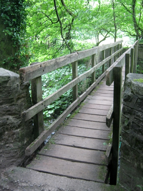 IMG_5556Wooden bridge