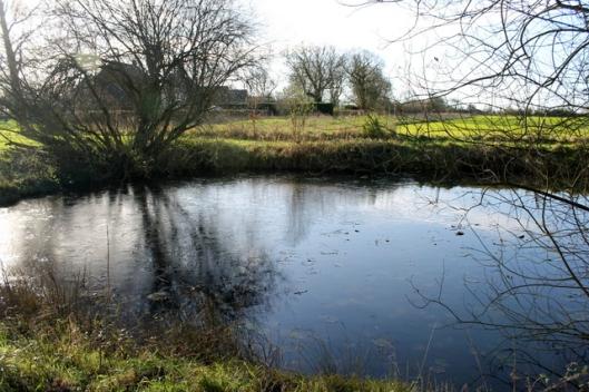 IMG_2547Big pond