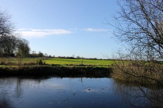 IMG_2549Big pond