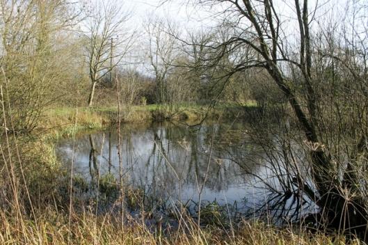 IMG_2552Big pond