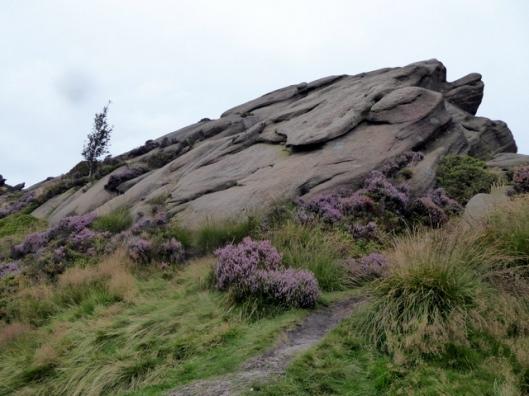 p1010225ramshaw-rocks