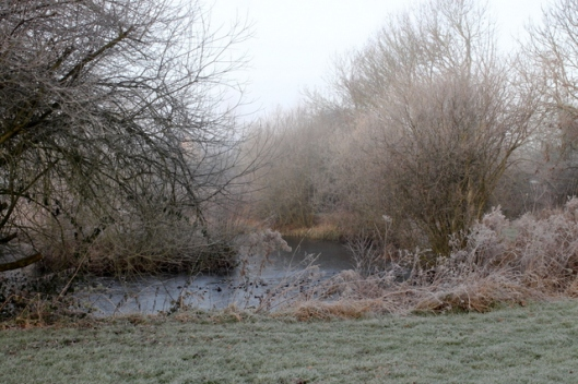 img_2821frost-and-fog