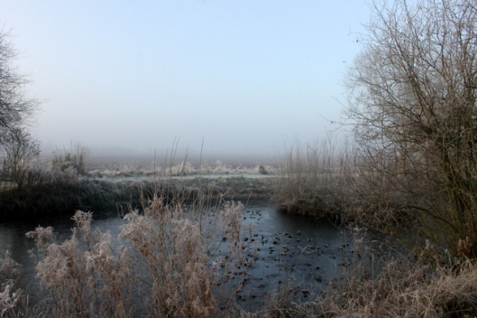 img_2826frost-and-fog