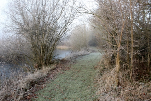 img_2827frost-and-fog