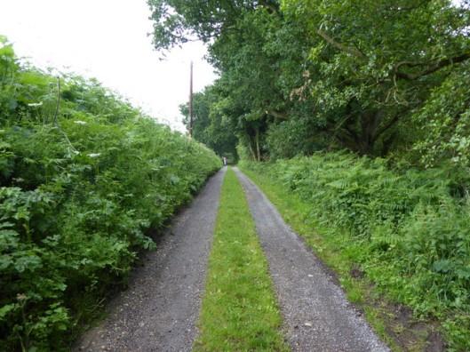 p1000534tinkers-lane
