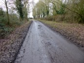 Our muddy lane