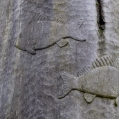 Fish on the sculpture